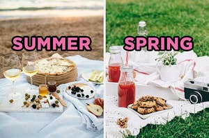 """On the left, a beach picnic with fruits, cheese pizza, and wine labeled """"summer,"""" and on the right, a picnic in the grass with cookies, juice, and a vintage camera labeled """"spring"""""""