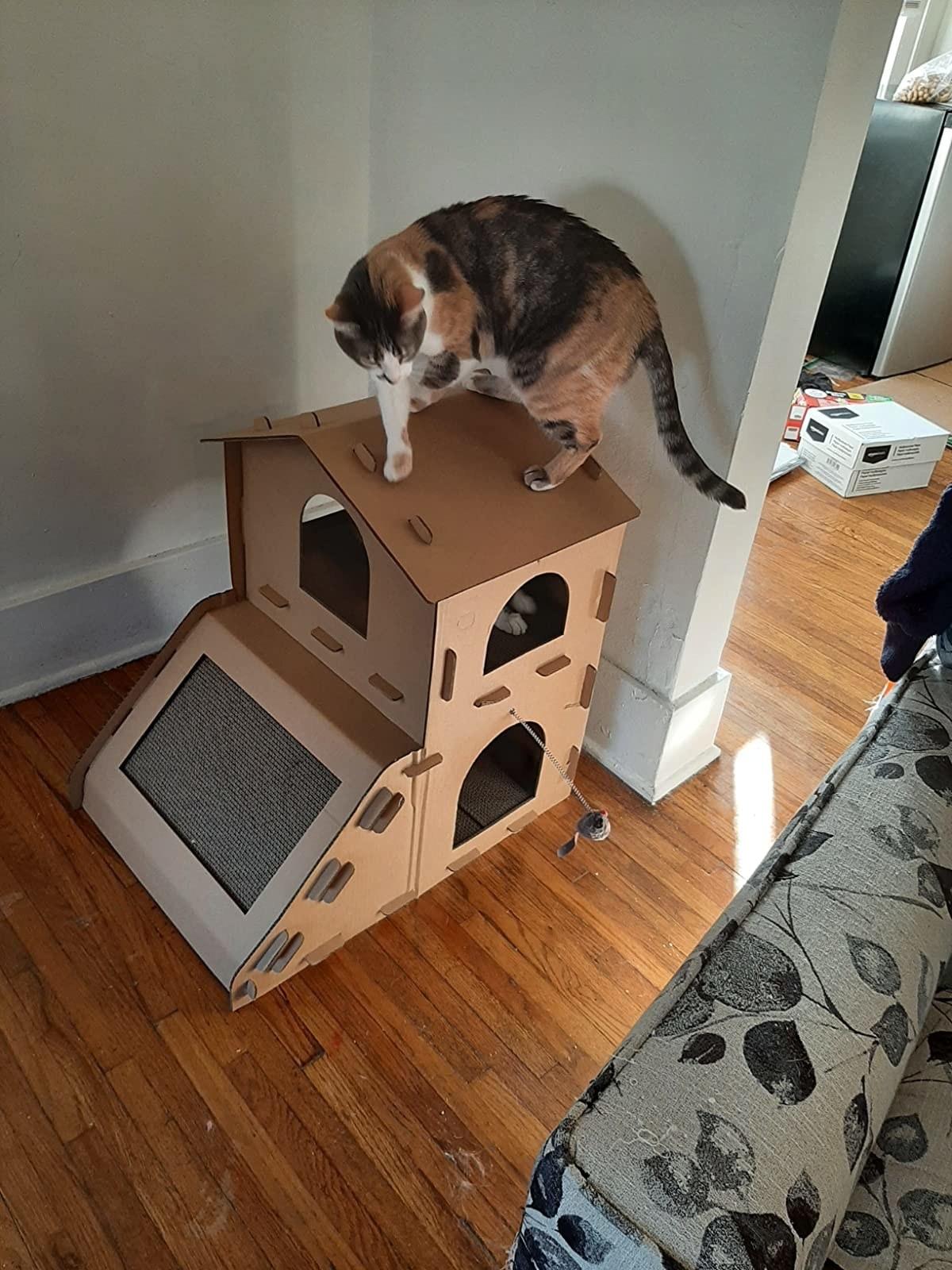 A calico cat on a multi-story cardboard scratcher