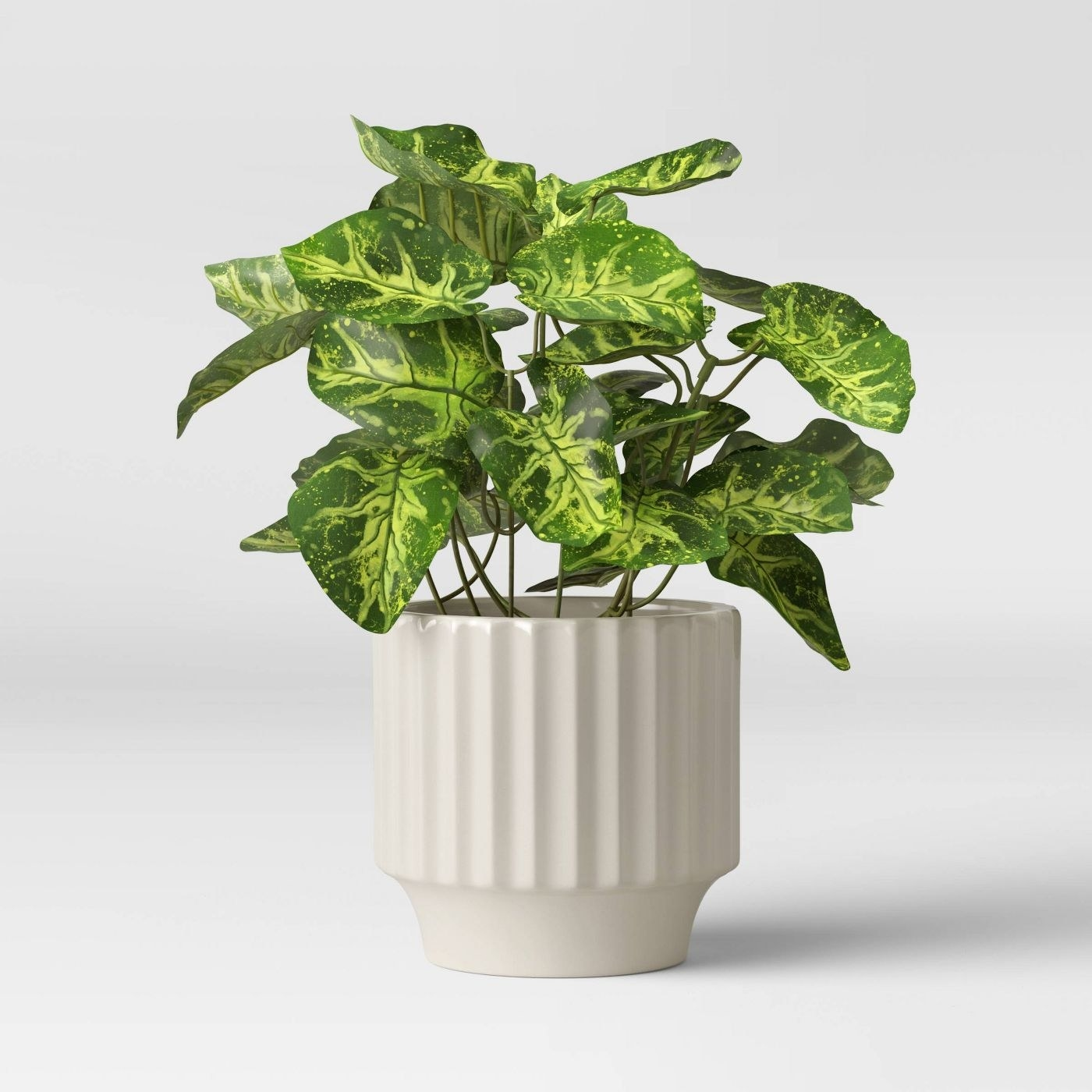 white textured planter with a plant inside