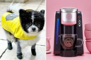 dog rain jacket and coffee maker