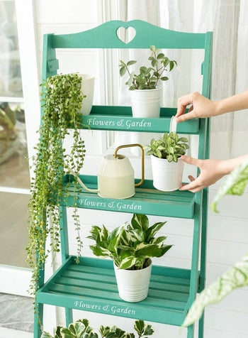 plant shelf with the different white pots