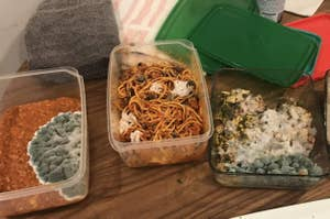 four tupperware containers full of moldy food