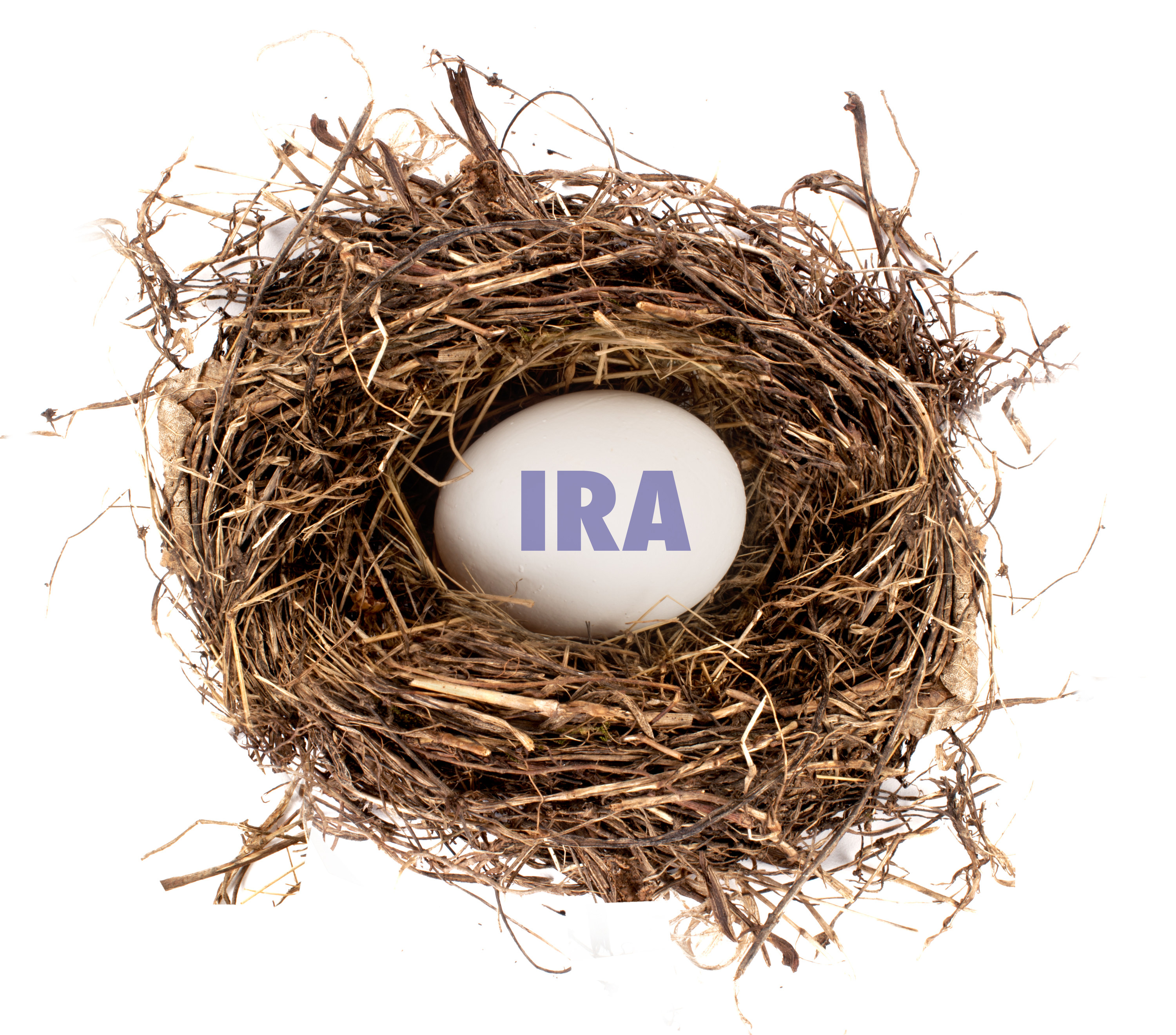 Nest with egg inside labeled IRA