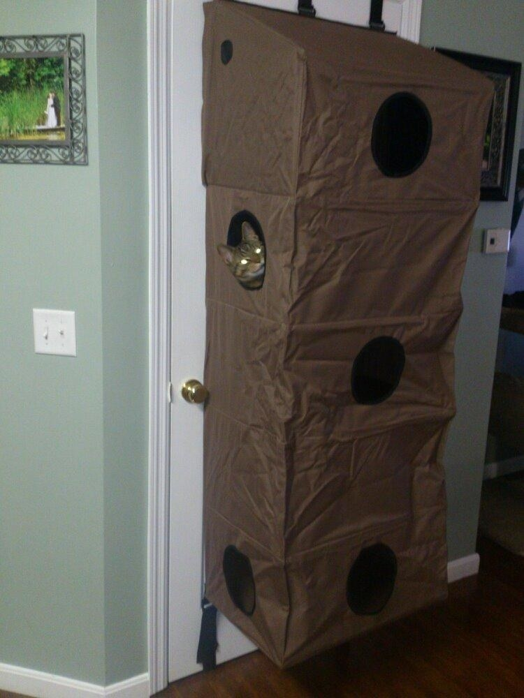 The five-level cat condo, which has entrances/ peepholes on multiple floors, and attaches to the back of doors with built-in straps