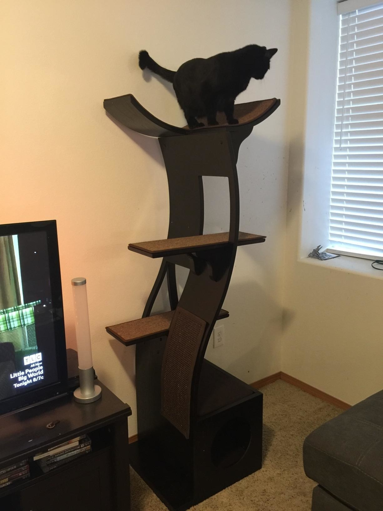The cat tree, which is dark wood in a curving vertical shape, with scratch pads, platforms, and a hideout built in