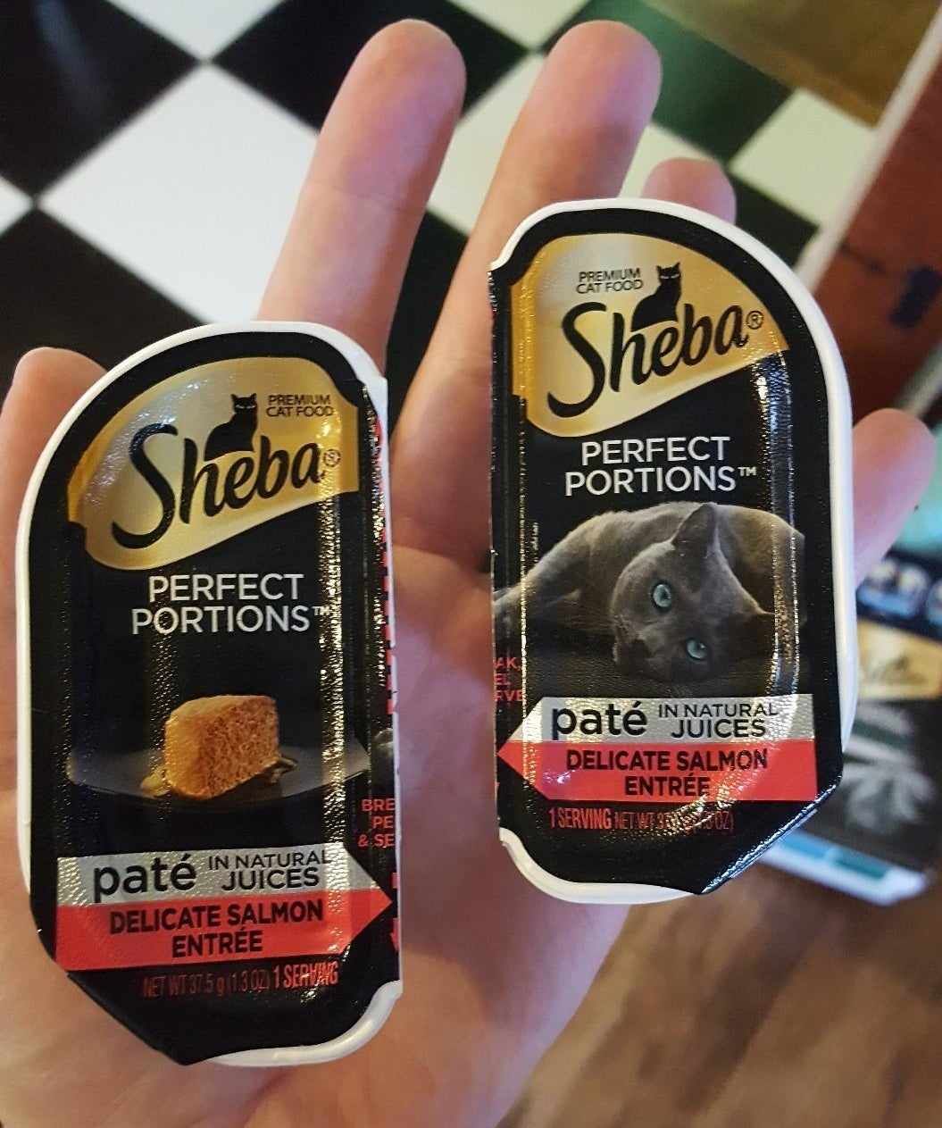 a hand holding the cat food