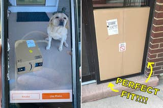 A dog sitting next to a package, and a a box that fits into a wall perfectly