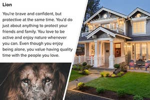 Lion quiz result and a nice house