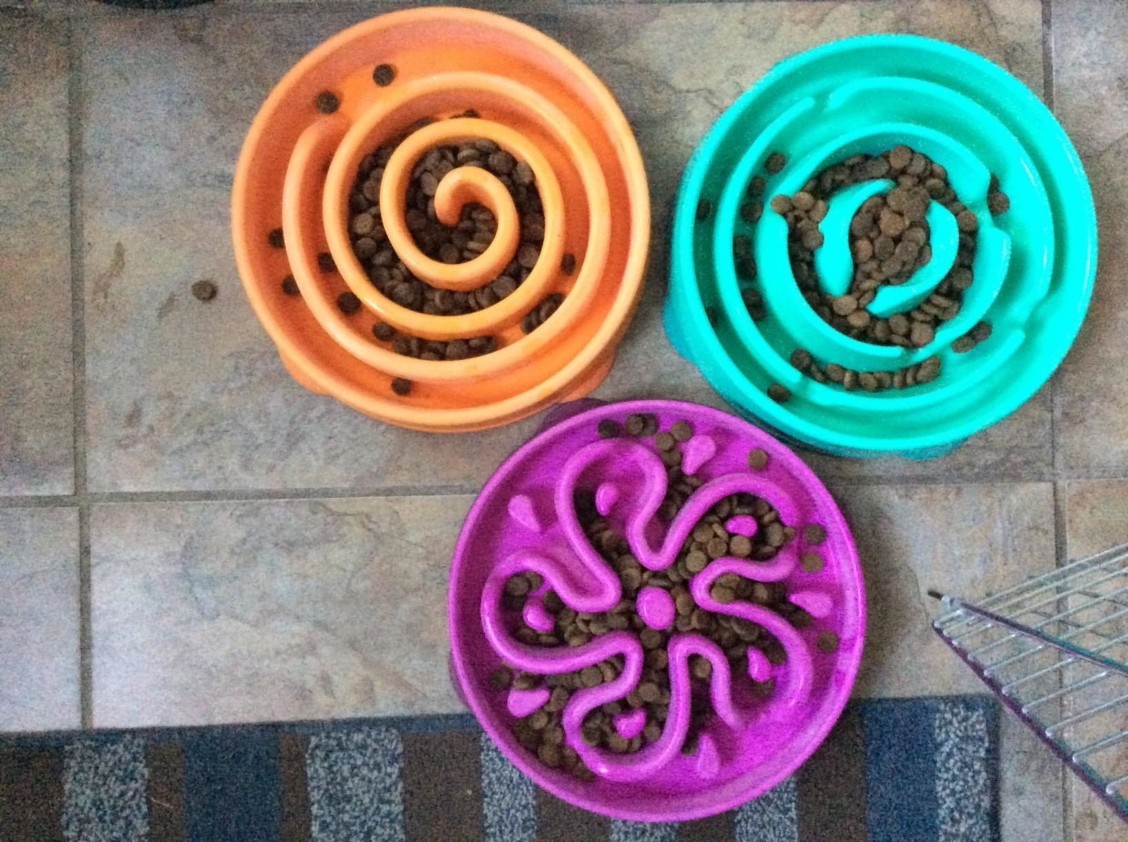 three brightly colored bowls with kibble