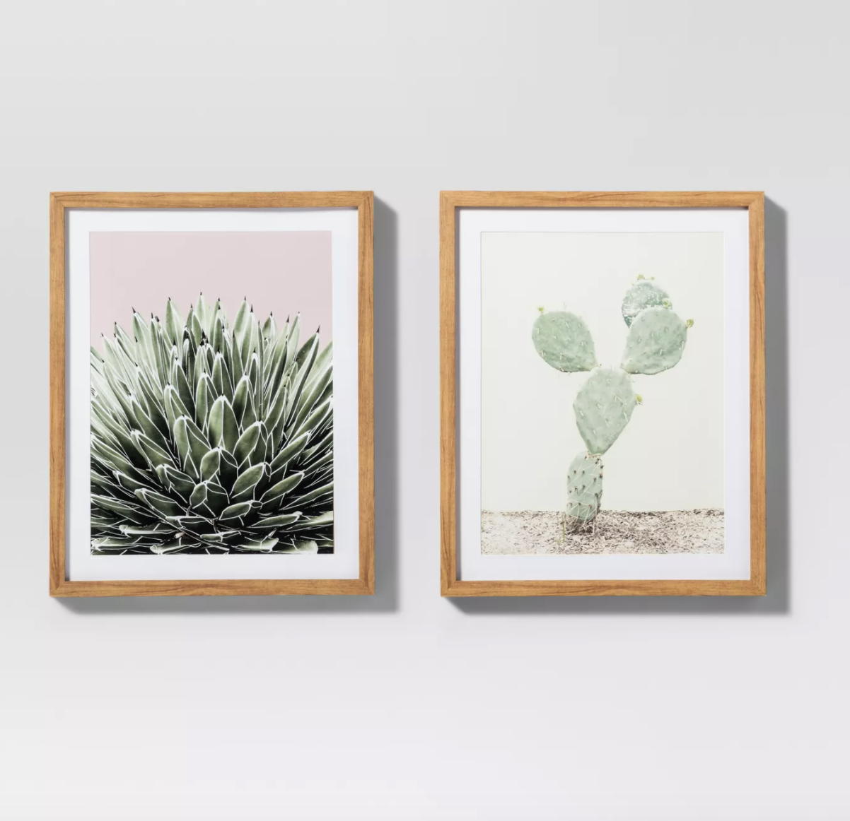 two cactus wall prints with wood frames
