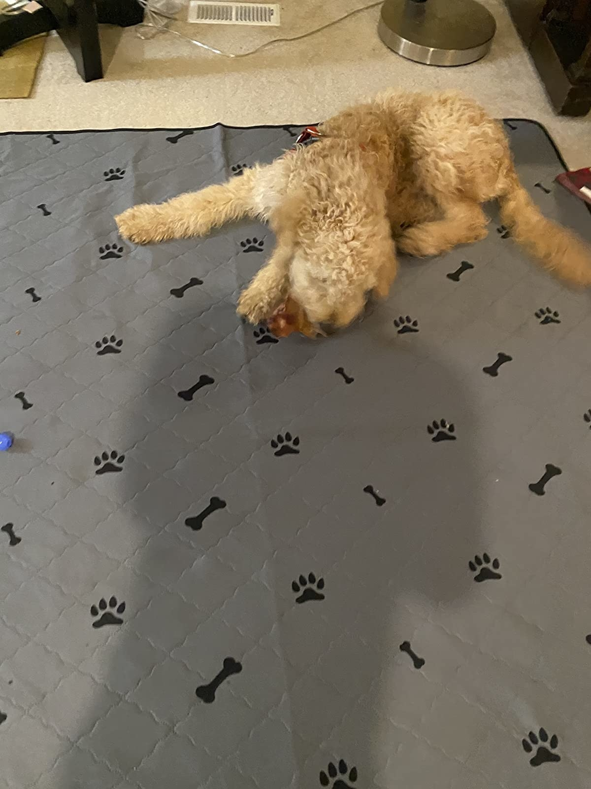 a dog on the gray quilted mat with paws and bones printed on it