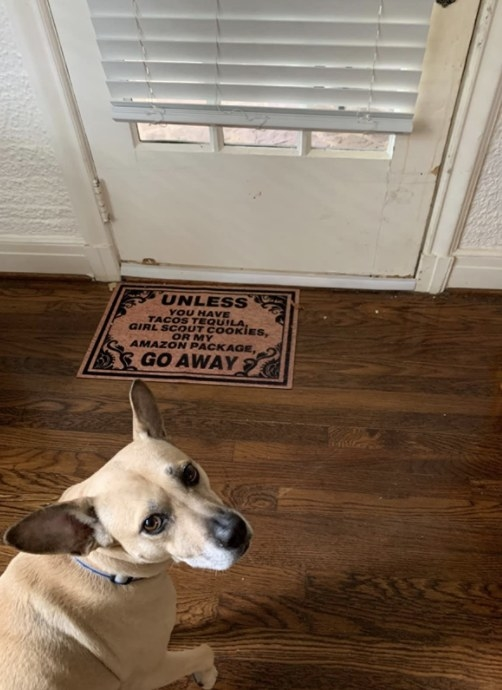 the draft stopped underneath the door