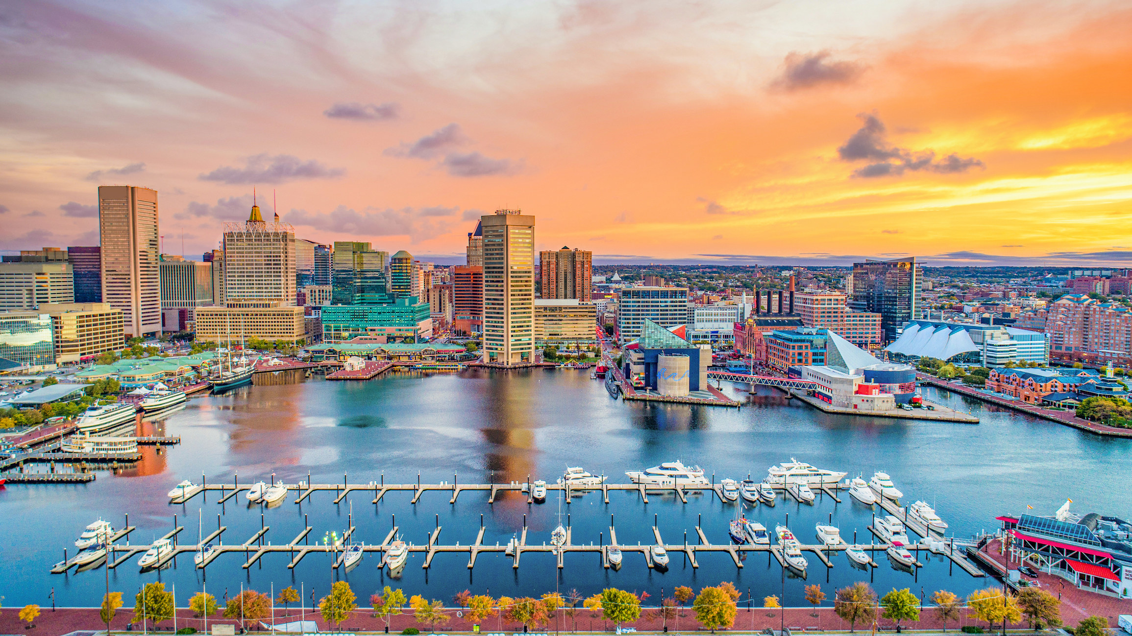 Boats in the harbor in Baltimore with tall buildings in the background
