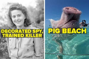 Odette Hallowes, a decorated WWII spy, and Pig Beach, and island in the bahamas