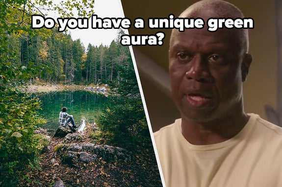 A person sits by a lake surrounded by a forest and Andre Braugher as Raymond Holt in the show