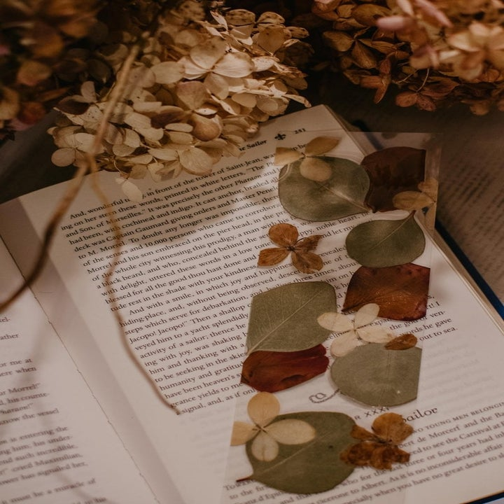a bookmark laid across the page of a book