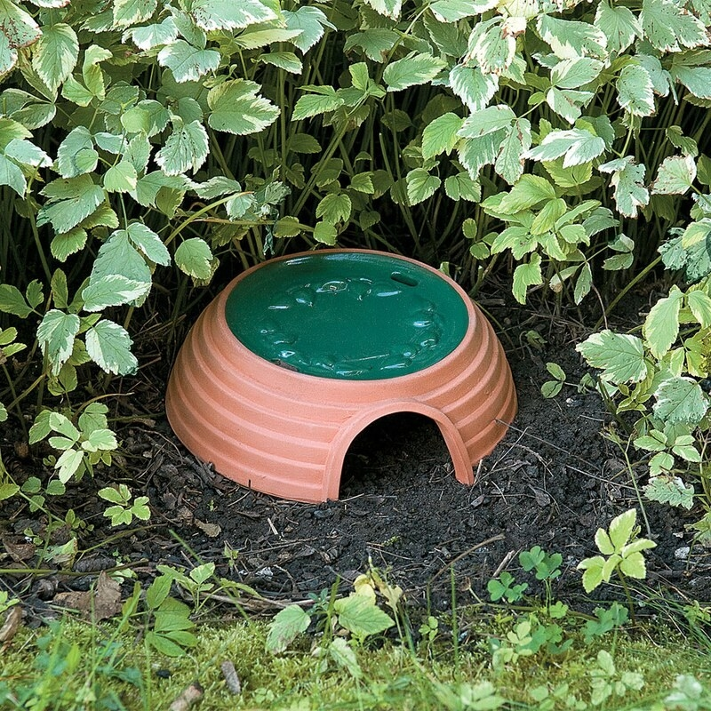 The toad house in a garden