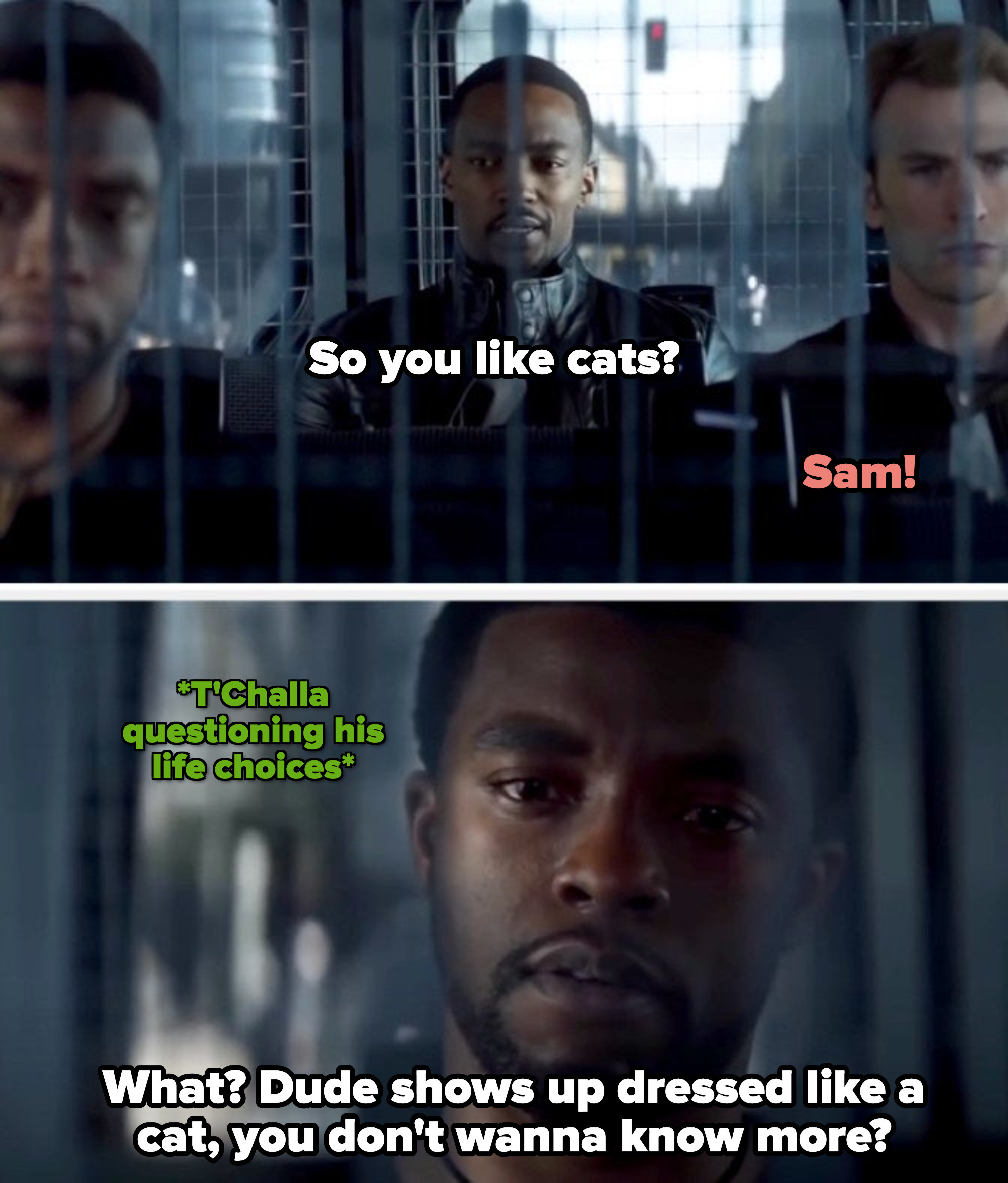 Sam asking T'Challa if he likes Cats