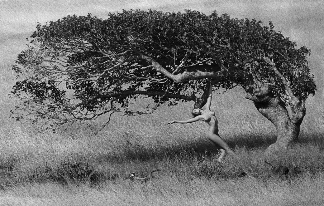 A naked woman dancing underneath a tree
