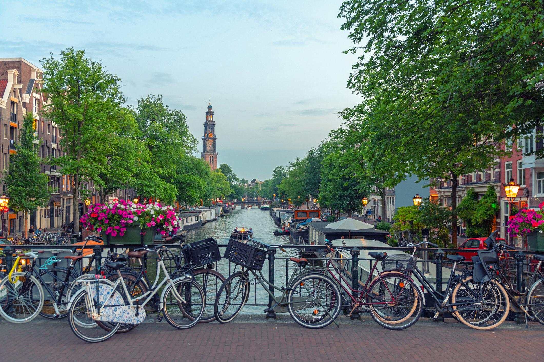Bikes lined up along the canal in Amsterdam.
