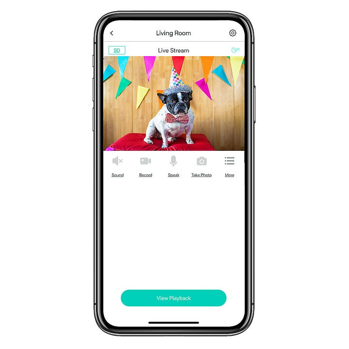A view of the app associated with the pet, on an iPhone