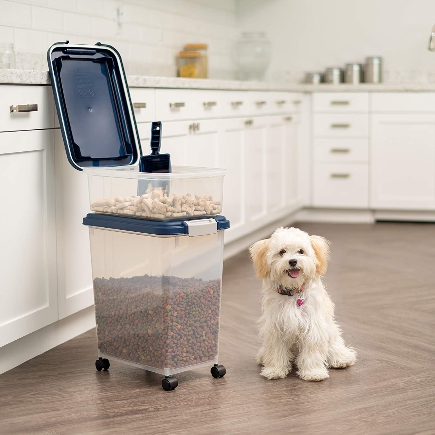 wheeled deep dog food plastic bin with snap-on lid topped with smaller treat bin; cute dog sits next to it