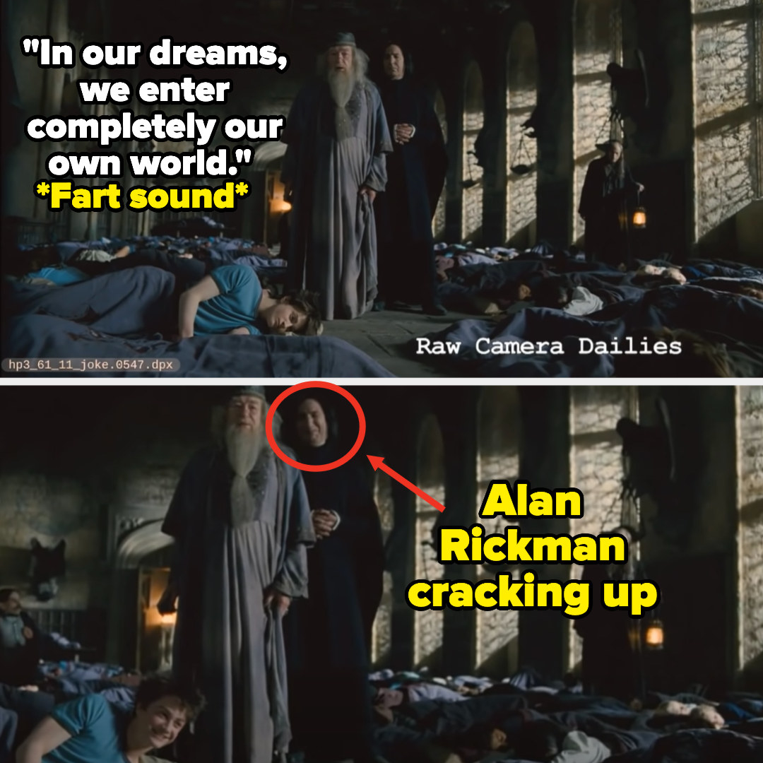 "Michael Gambon as Dumbledore says ""In our dreams, we enter completely our own world"" then there's a fart noise and Alan Rickman cracks up"