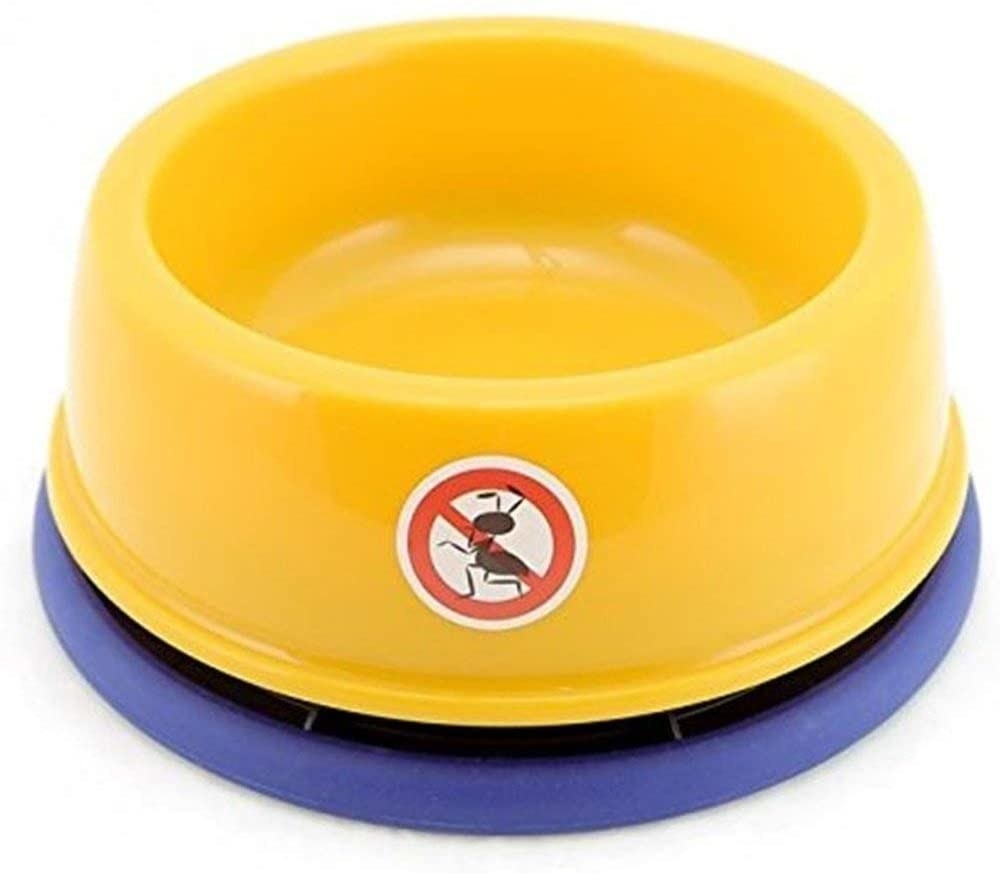 a yellow and blue ant-resistant food bowl