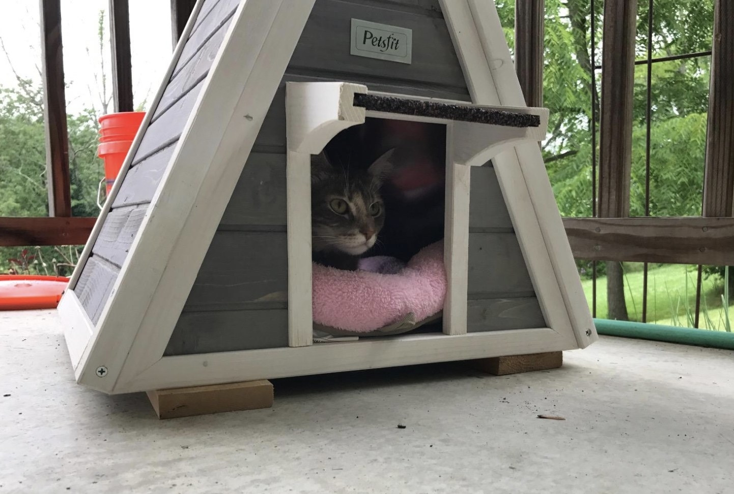 a cat resting inside an outdoor cat house that is resting on a porch