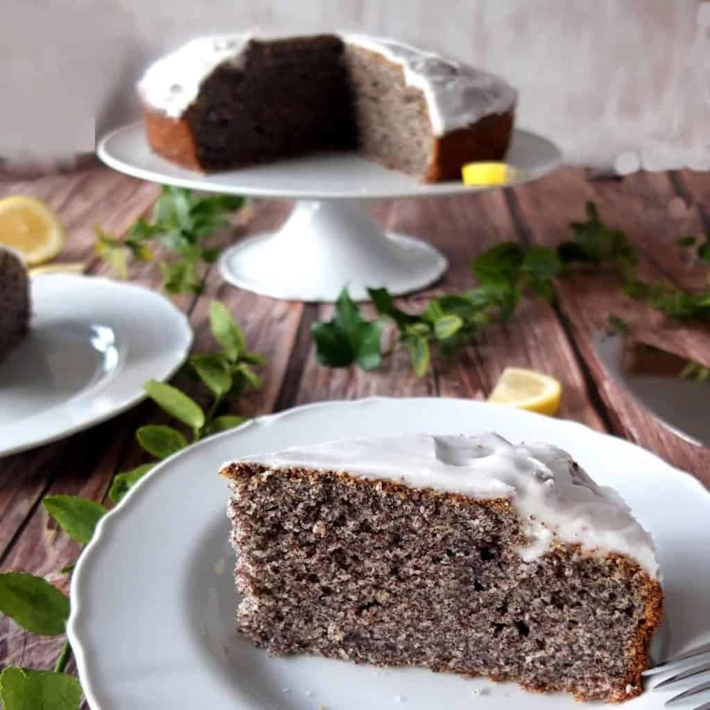 Dark brown cake with dense texture covered with white icing sitting on white plate