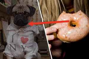 """Tim Blaney as Frank the Pug in the movie """"Men in Black II"""" and a hand holds a donut with a bite taken out."""