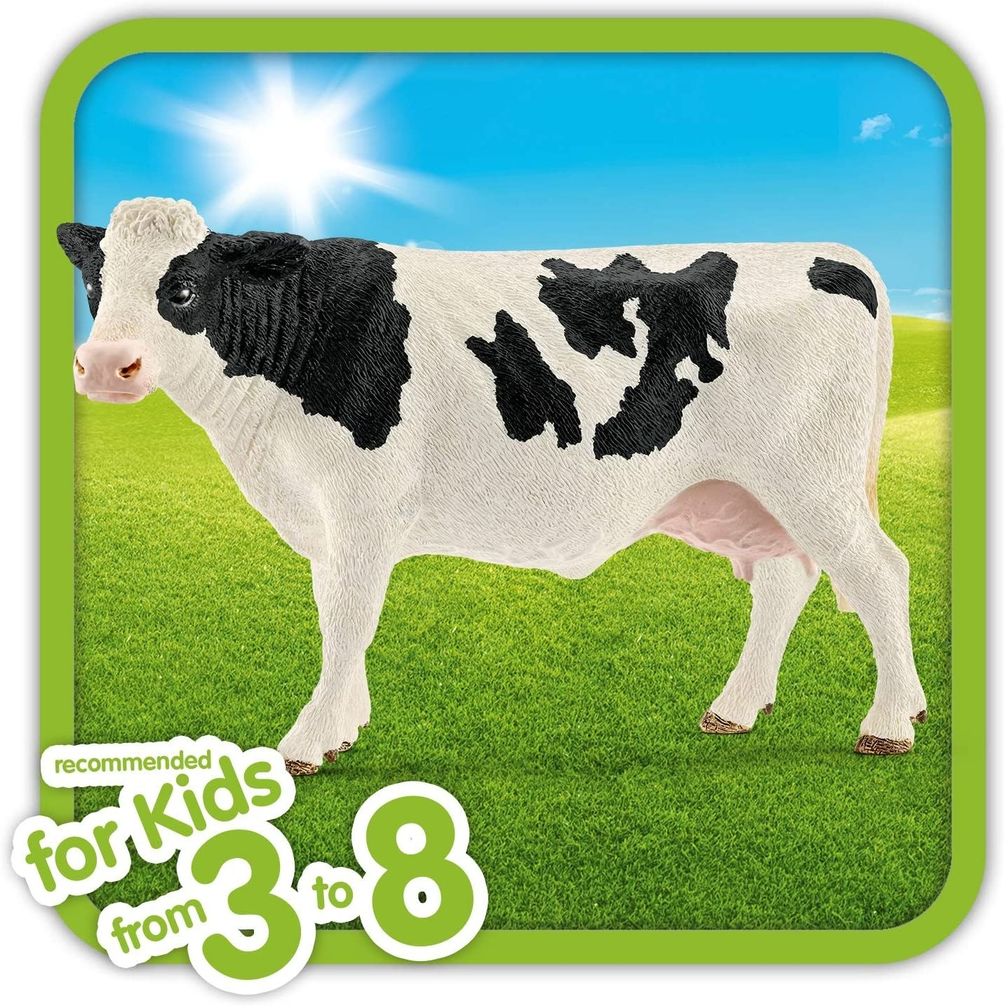 The white and black cow
