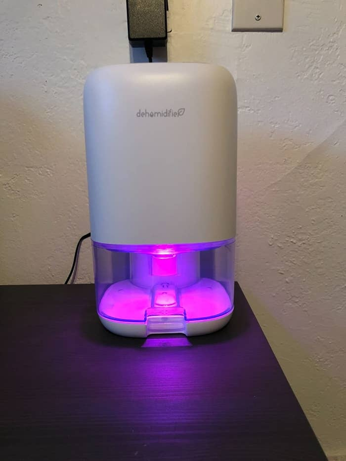 Reviewer dehumidifier on table