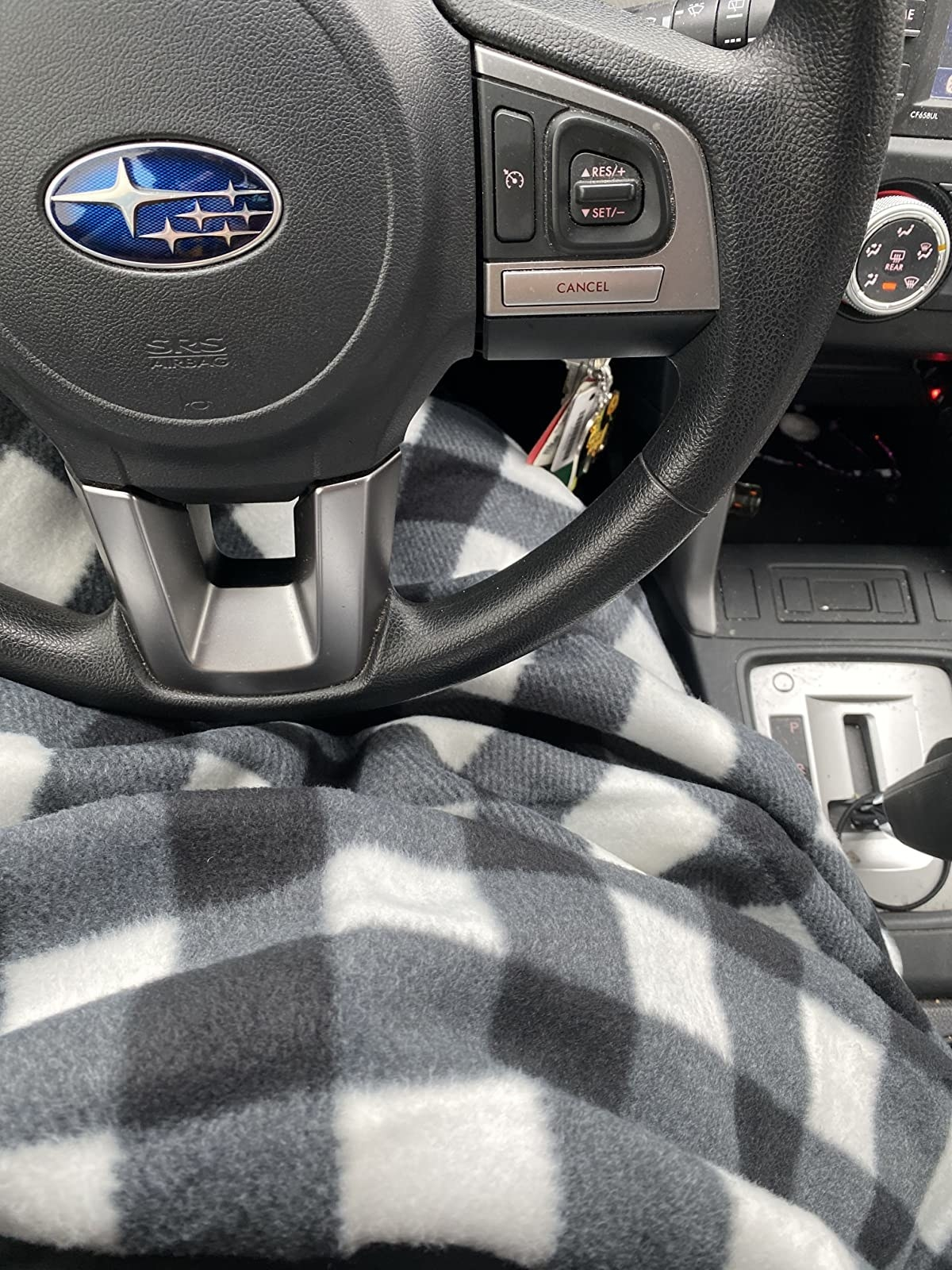 the checkered blanket on a lap in a car