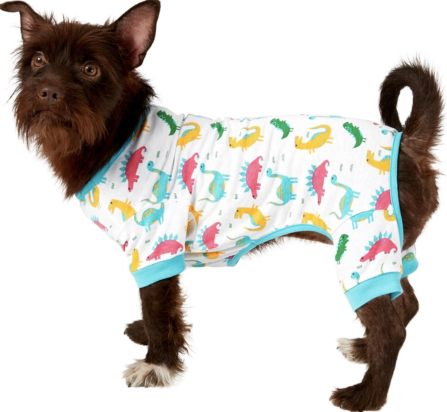 A dog wearing dinosaur pajamas