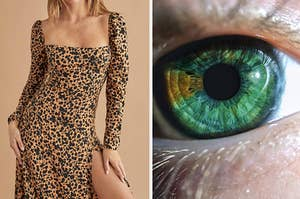 A long-sleeve leopard print dress on the left and a green eye on the right