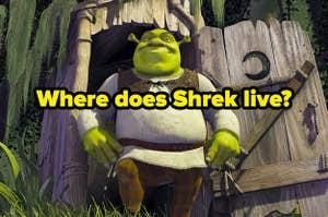 """""""where does shrek live?"""" over shrek"""
