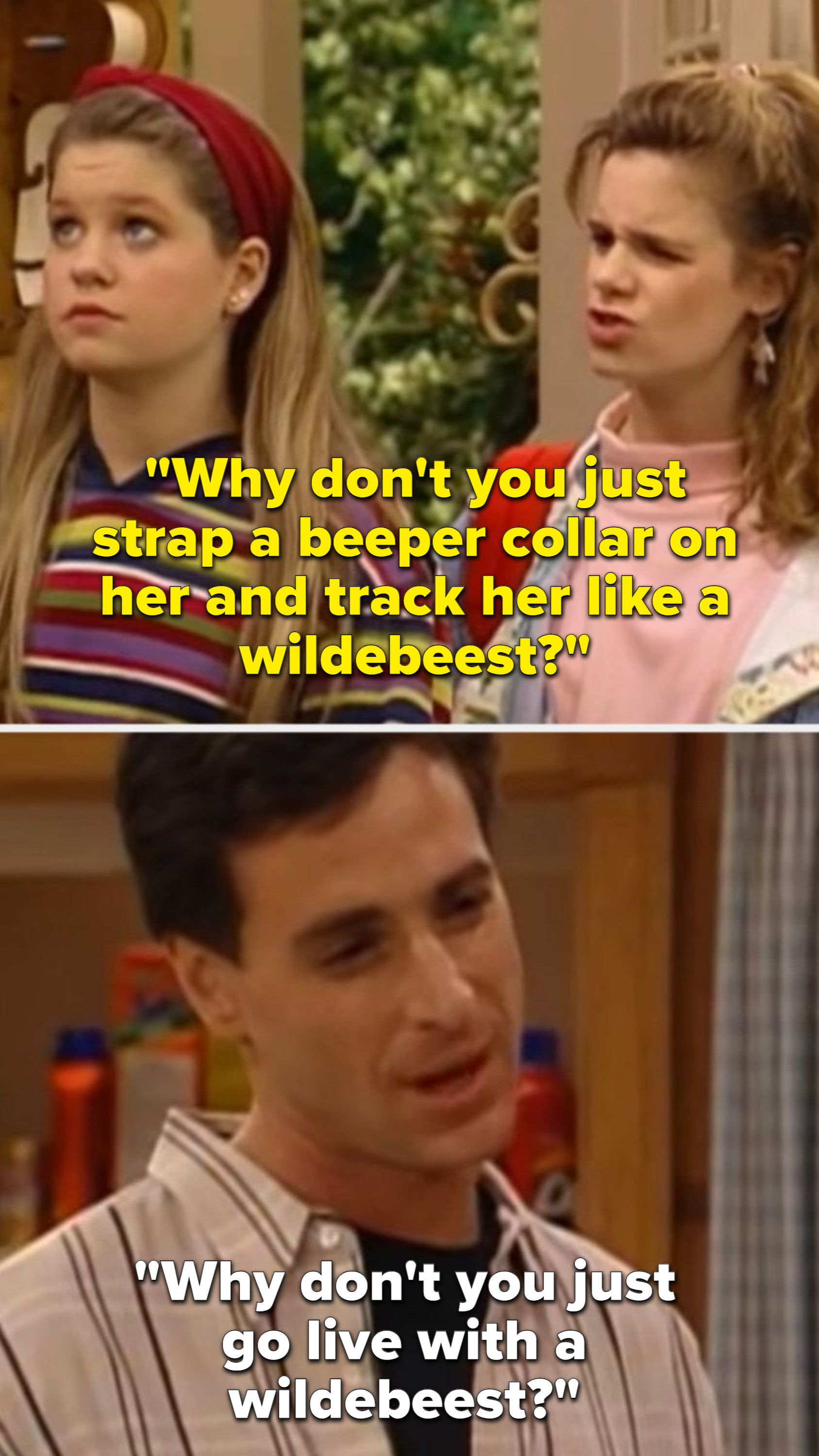 danny tanner telling kimmy to go live with a wildebeest