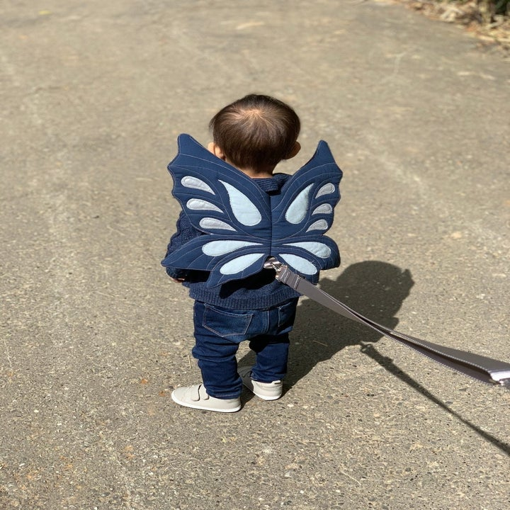 The same child from the back, showing the wings and the attached lead