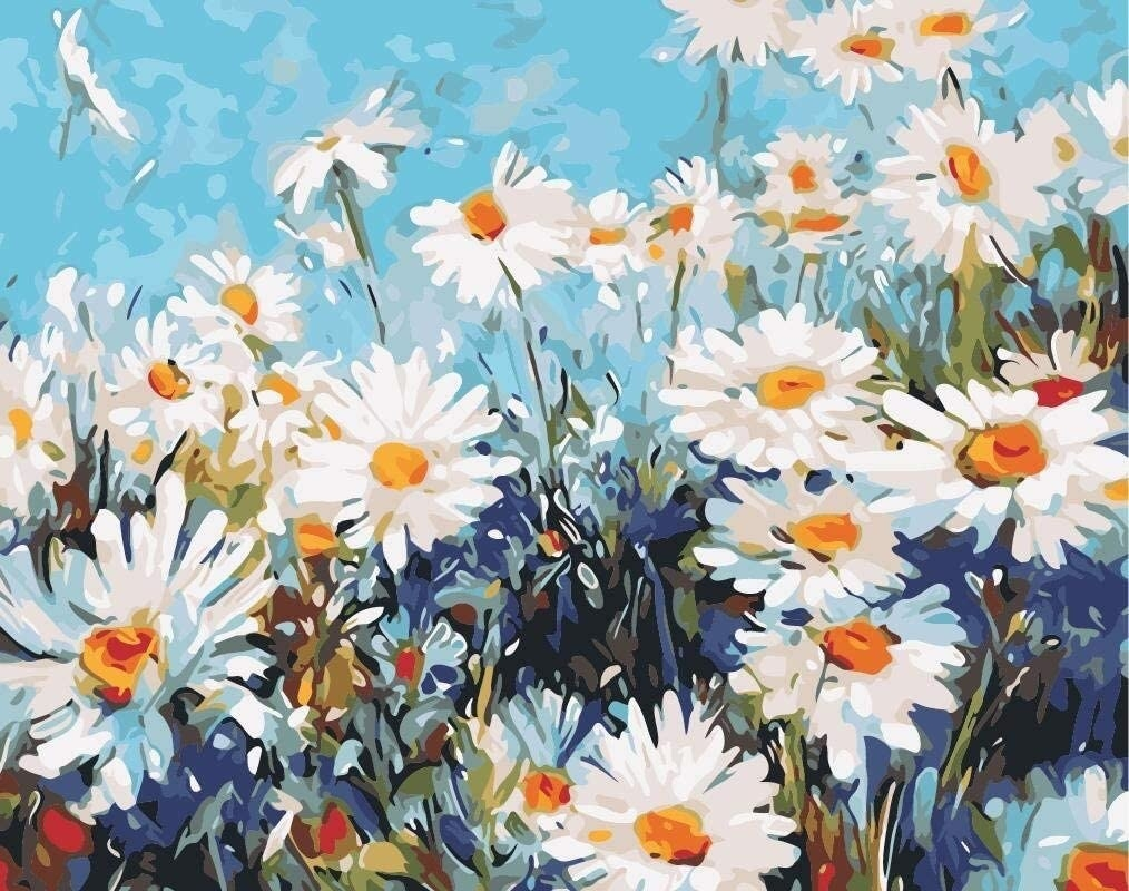 A finished image of the paint by numbers image of daisies