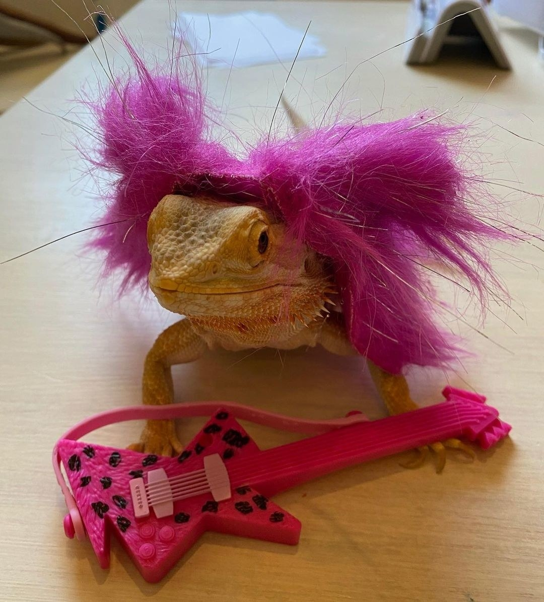 "Speed wearing a purple wig and ""holding"" a mini guitar"