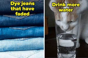 dyed jeans and cat drinking water