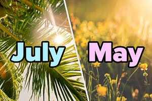 """""""July"""" over palm trees and """"May"""" over flowers"""
