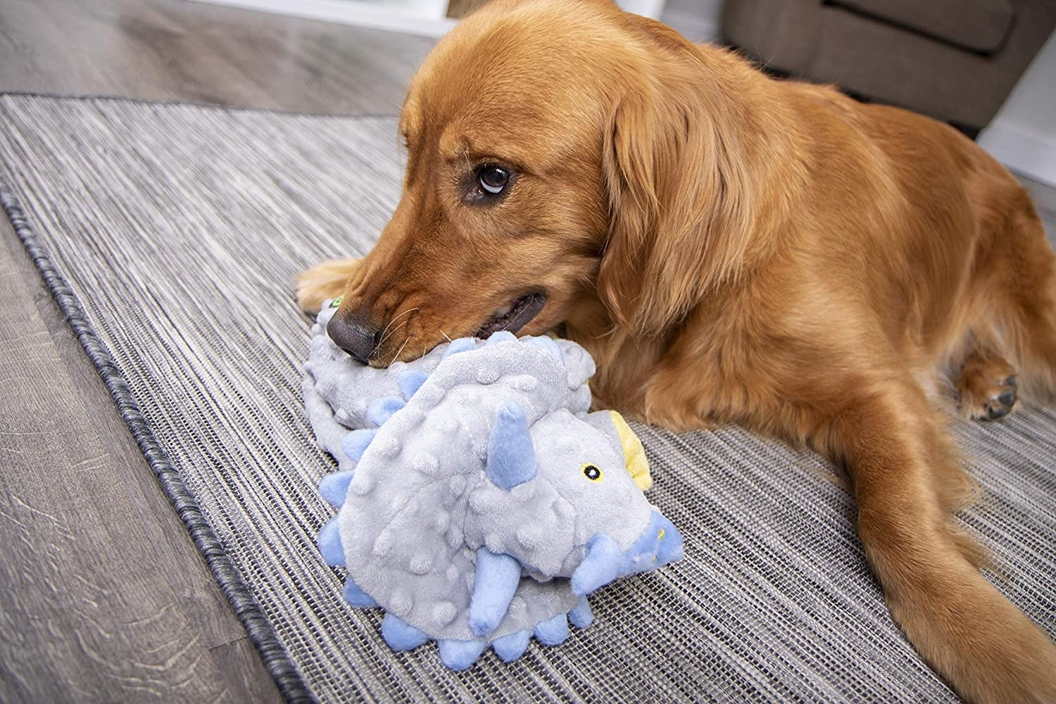 a golden retriever chewing on a dinosaur shaped plush toy