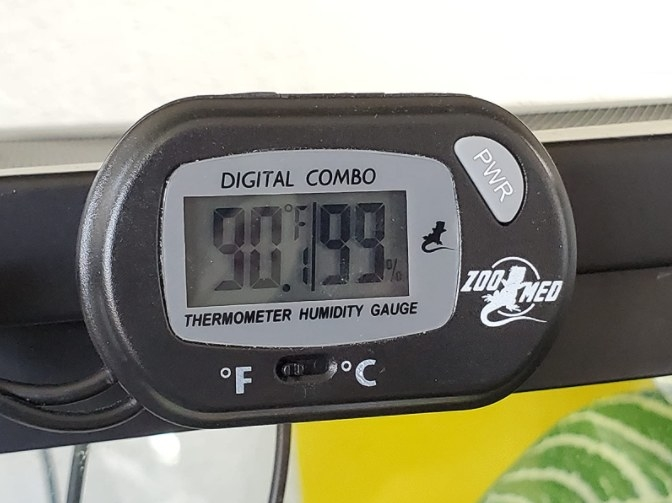 A quick, easy-to-read digital thermometer that helps monitor temperature and humidity levels inside a terrarium