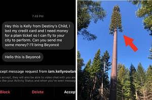 """来自黑客假装是碧昂丝的消息,以及一座细胞塔被严重伪装成一棵树""""class="""