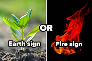 Earth sign or fire sign