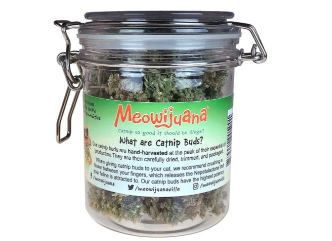 The jar of Meowijuana catnip