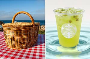 picnic basket and kiwi refresher