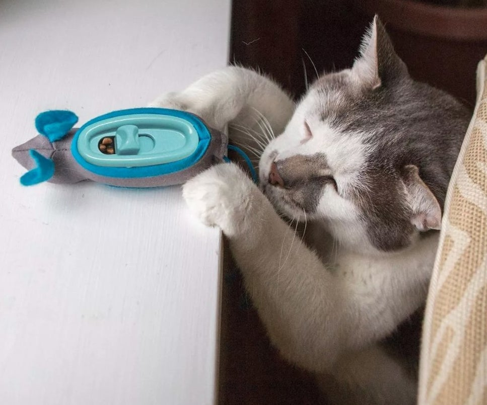 The ethical hunting toy being used by a cat